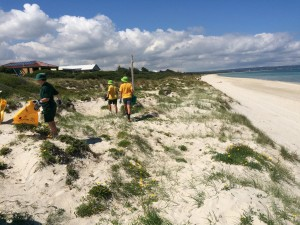 Friends of Carrum Foreshore